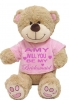 Adorable Will You Be My Bridesmaid Teddy Bear